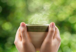 Calefacción de bajo consumo: ventajas de la ventilación de doble flujo