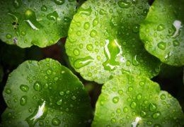 La humedad producida por condensación: causas frecuentes y posibles soluciones