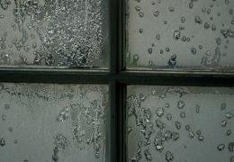 Protege tu salud: cómo eliminar la humedad de tu vivienda