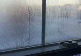 Recomendaciones para mejorar la humedad en el hogar