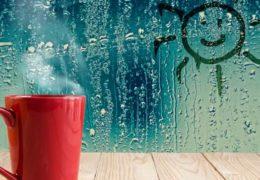 Absorber la humedad, ¿qué solución es la mejor?