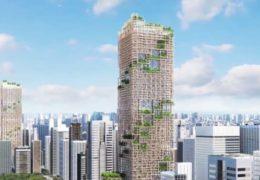 Edificios de madera, ¿una solución de construcción muy ecológica?