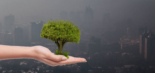 Mitos y realidades sobre la contaminación