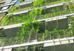 Arquitectura sostenible y ecológica, ¿podemos diseñar casas 'verdes'?