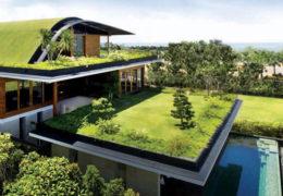 Consejos para convertir nuestro hogar en vivienda sostenible