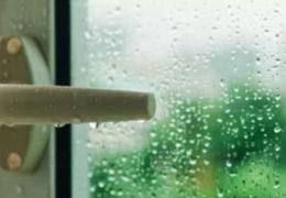Humedades en verano o invierno, ¿cuándo son más peligrosas?